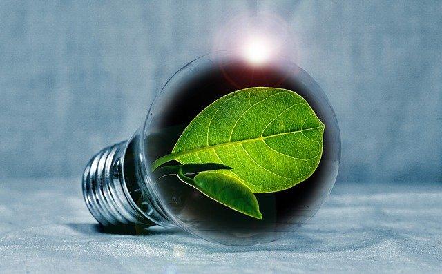 Energía renovable en Latinoamérica: la utopía posible
